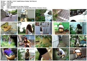 Yapoo's Market Japanese http://69scat.com/jade-filth-f15-02-caught-pissing-or-pooping-wet-panty/